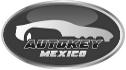 logo de Autokey Mexico