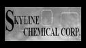 logo de Skyline Internacional
