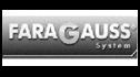 logo de Division Faragauss Mexico