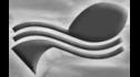 logo de Argen-Pesca
