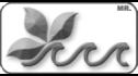 logo de Albercas y Jardines del Bajio