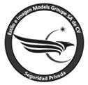 logo de Estilo E Imagen Models Groupe